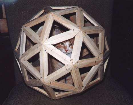 Geodesic Cat Ball